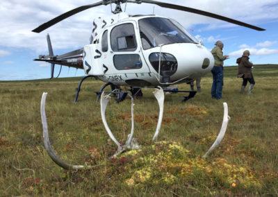 Nunavik-Rotors-2020-11